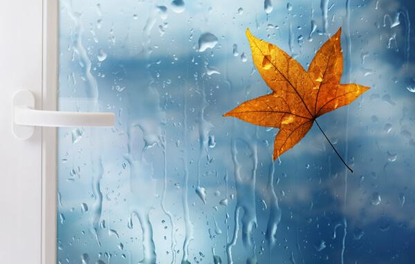 Окно в холодное время года