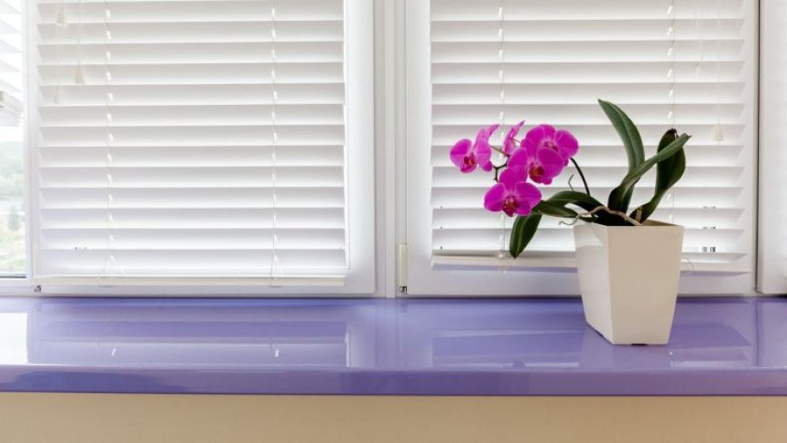 Как выбрать жалюзи на пластиковые окна, чтобы не ошибиться?