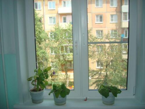 okna-galllery-82